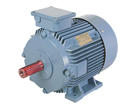 Motors - BCH Electric Limited